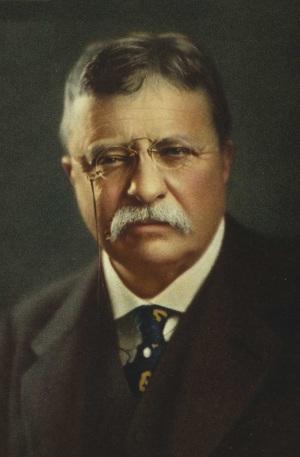 theodore roosevelt criticism leadership